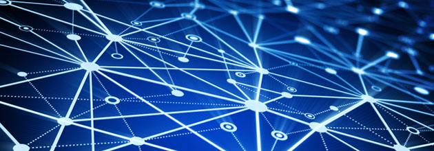 Lexian network supply chain management tools